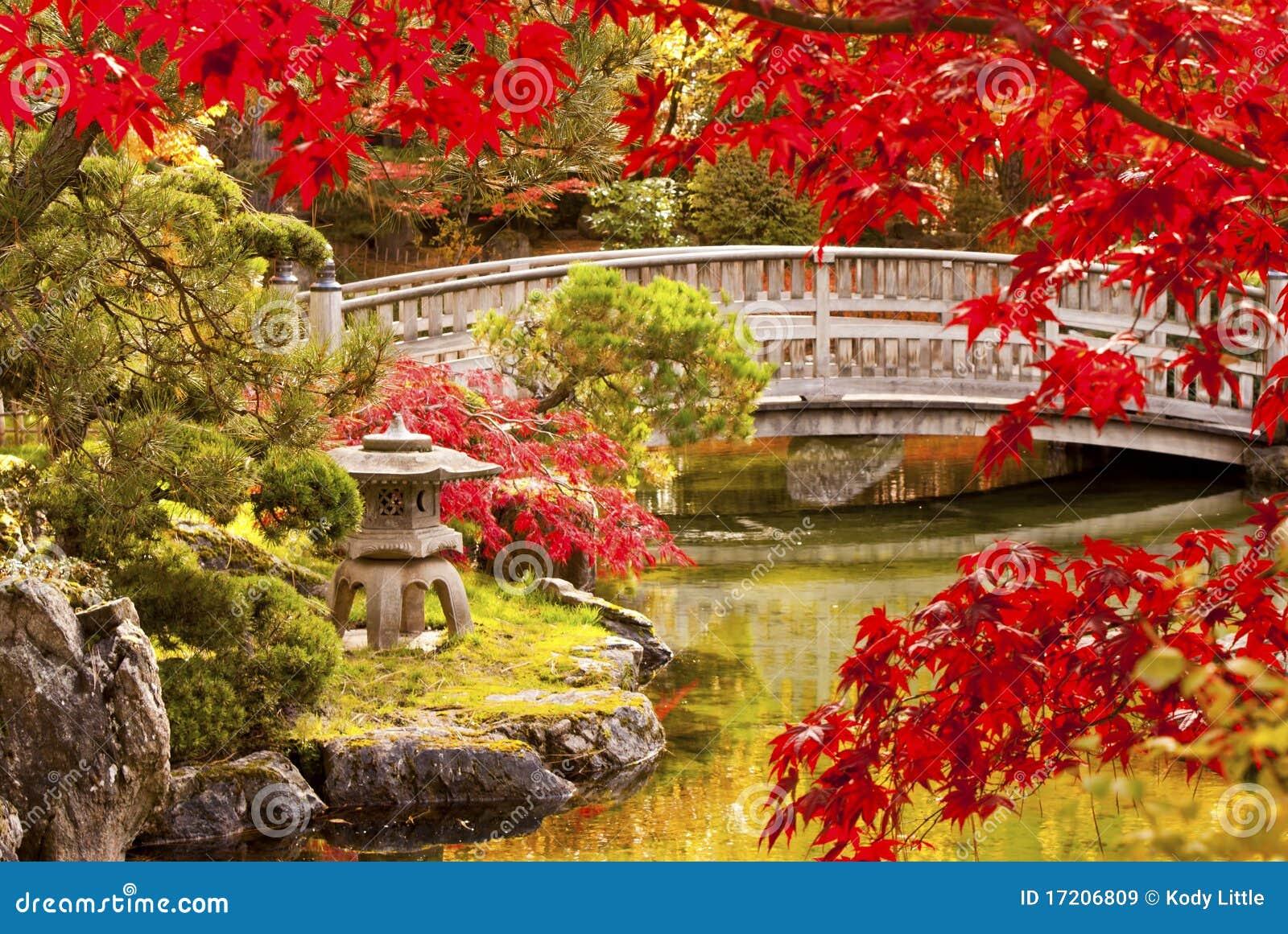 Giardino del giapponese di autunno immagini stock libere - Piccolo giardino giapponese ...