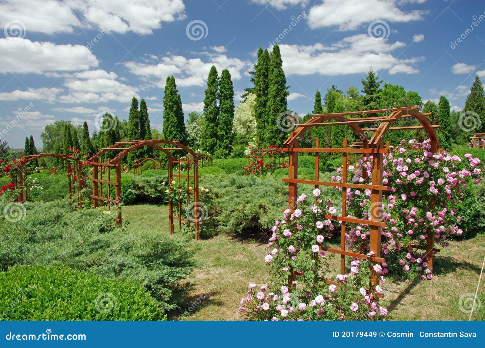 Giardino di estate