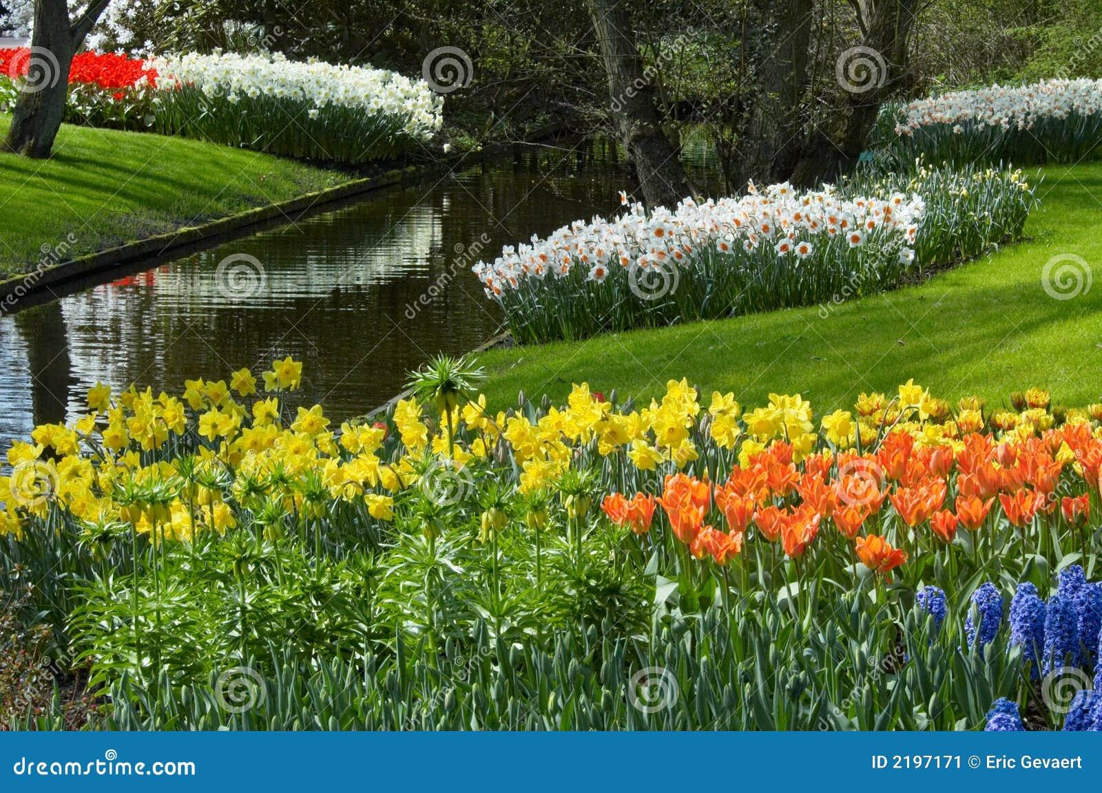 Giardino di fiore in primavera