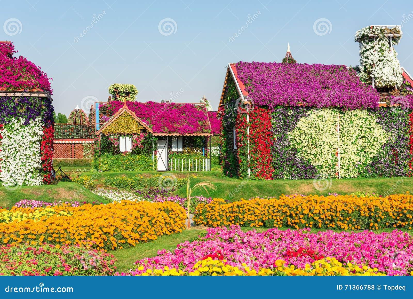 Giardino di miracolo del dubai con oltre milione fiori for Giardino con fiori