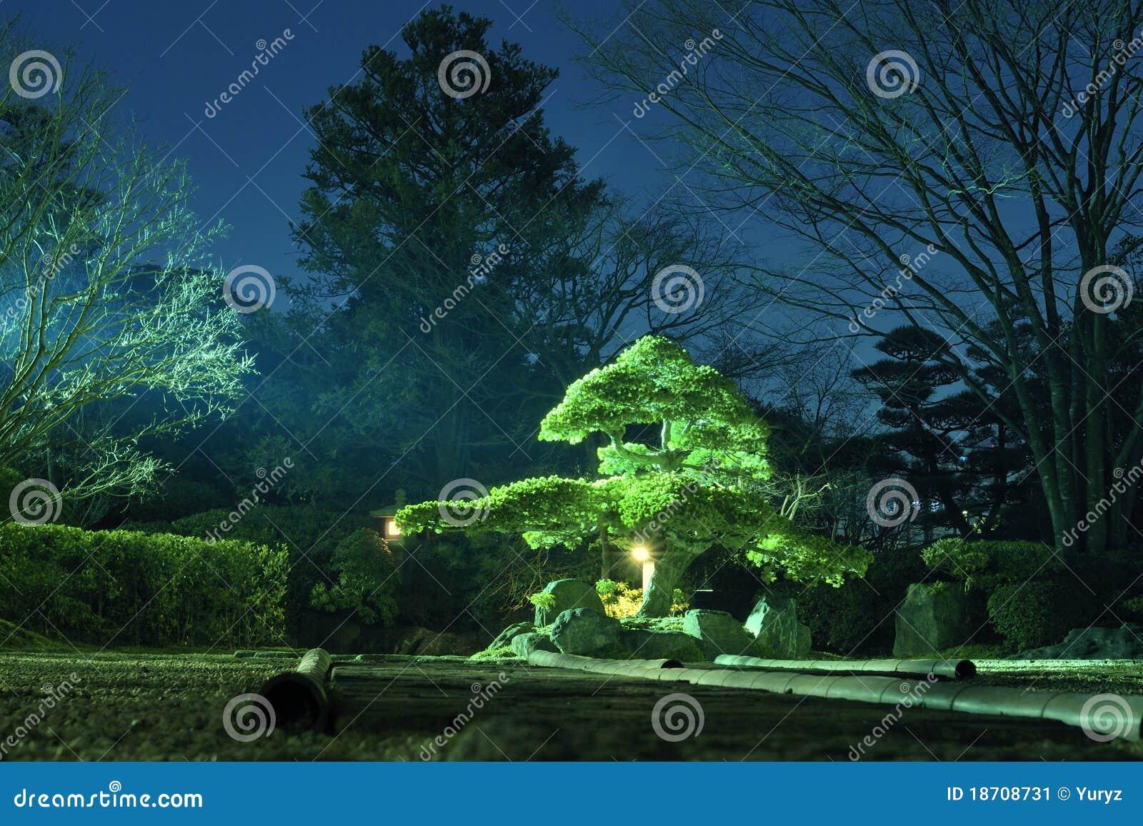 Giardino di notte immagine stock. immagine di giapponese 18708731