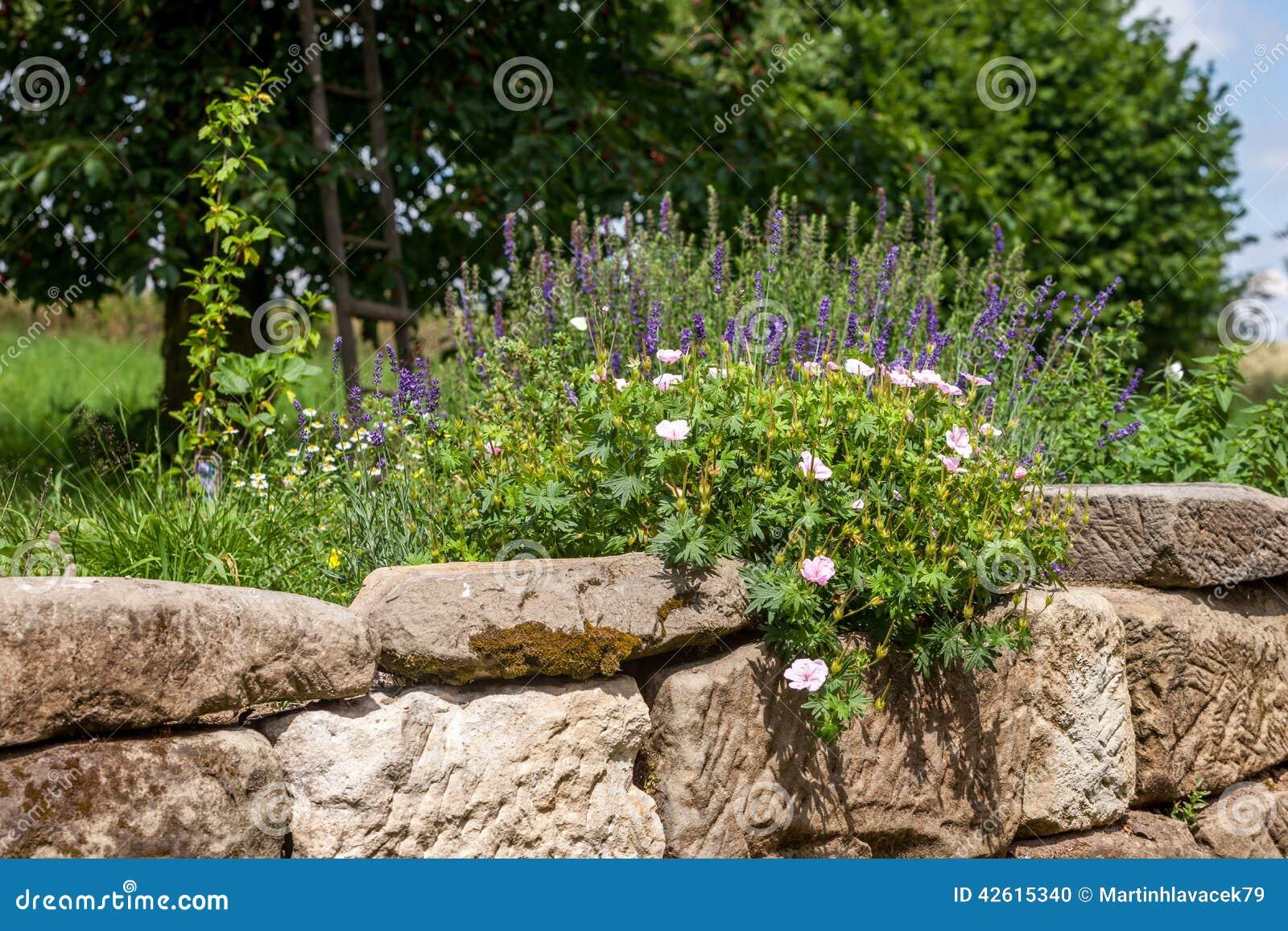 Giardino di rocce con i fiori fotografia stock immagine for Giardino con fiori