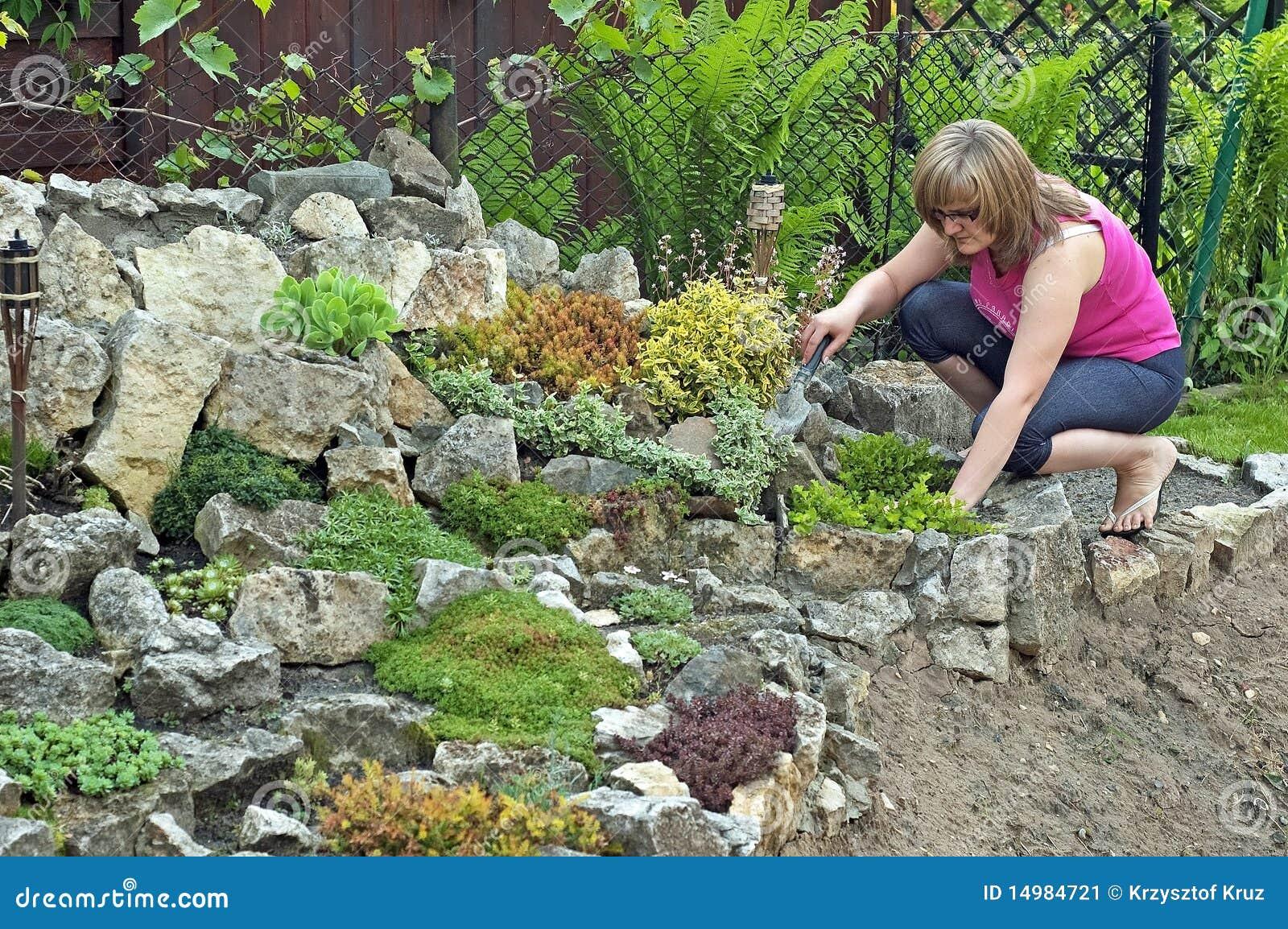 Rocce In Giardino.Giardino Di Roccia In Primavera Immagine Stock Immagine Di