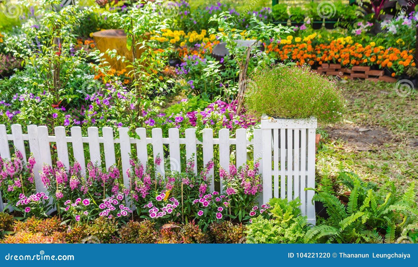In giardino domestico