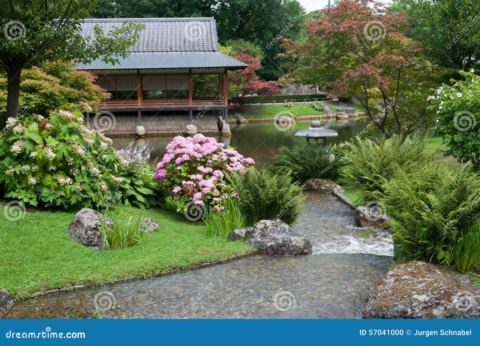 Giardino Giapponese Fotografia Stock Immagine Di Serene 57041000