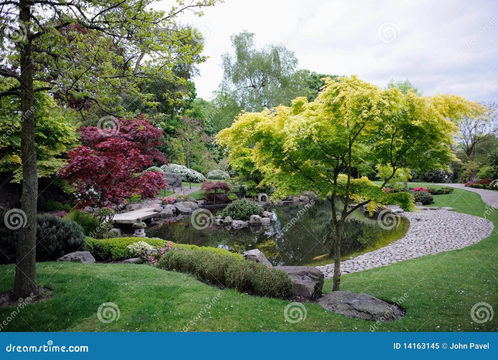 Giardino giapponese con gli alberi di acero e lo stagno for Stagno giardino