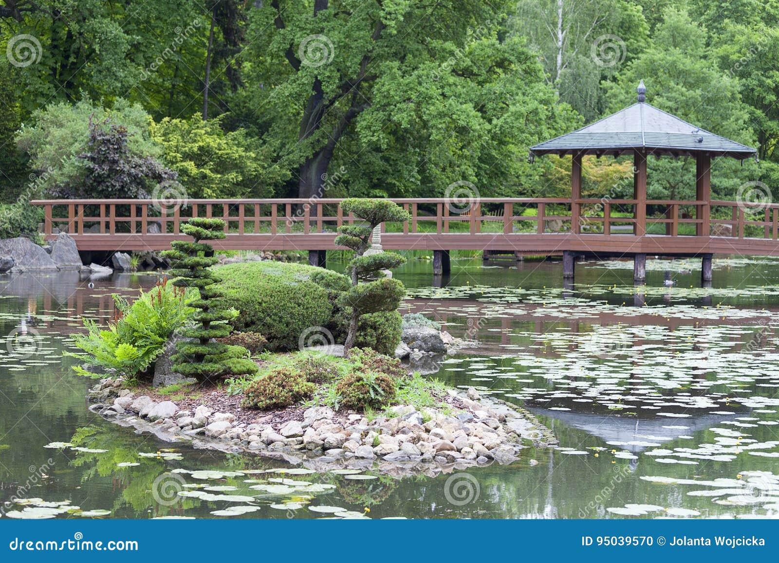 Giardino giapponese piante esotiche wroclaw polonia - Piante per giardino giapponese ...