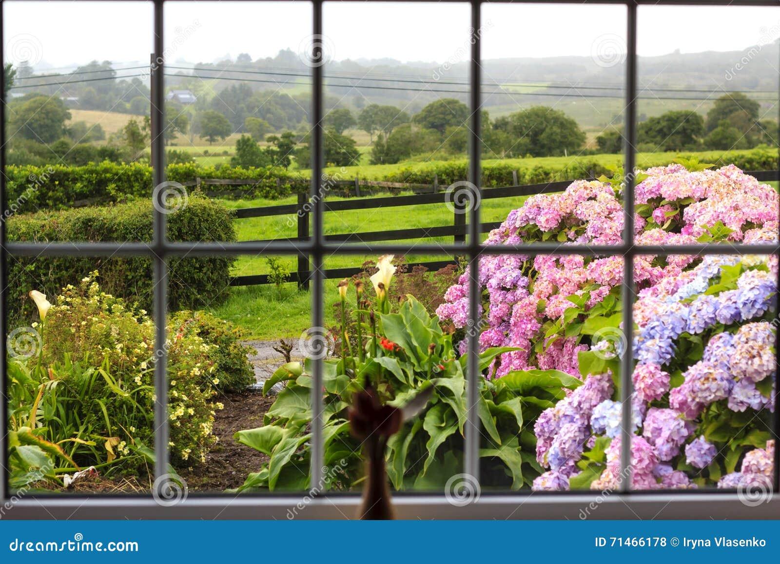 Giardino irlandese attraverso la finestra fotografia stock immagine di irlanda verde 71466178 - La finestra sul giardino ...