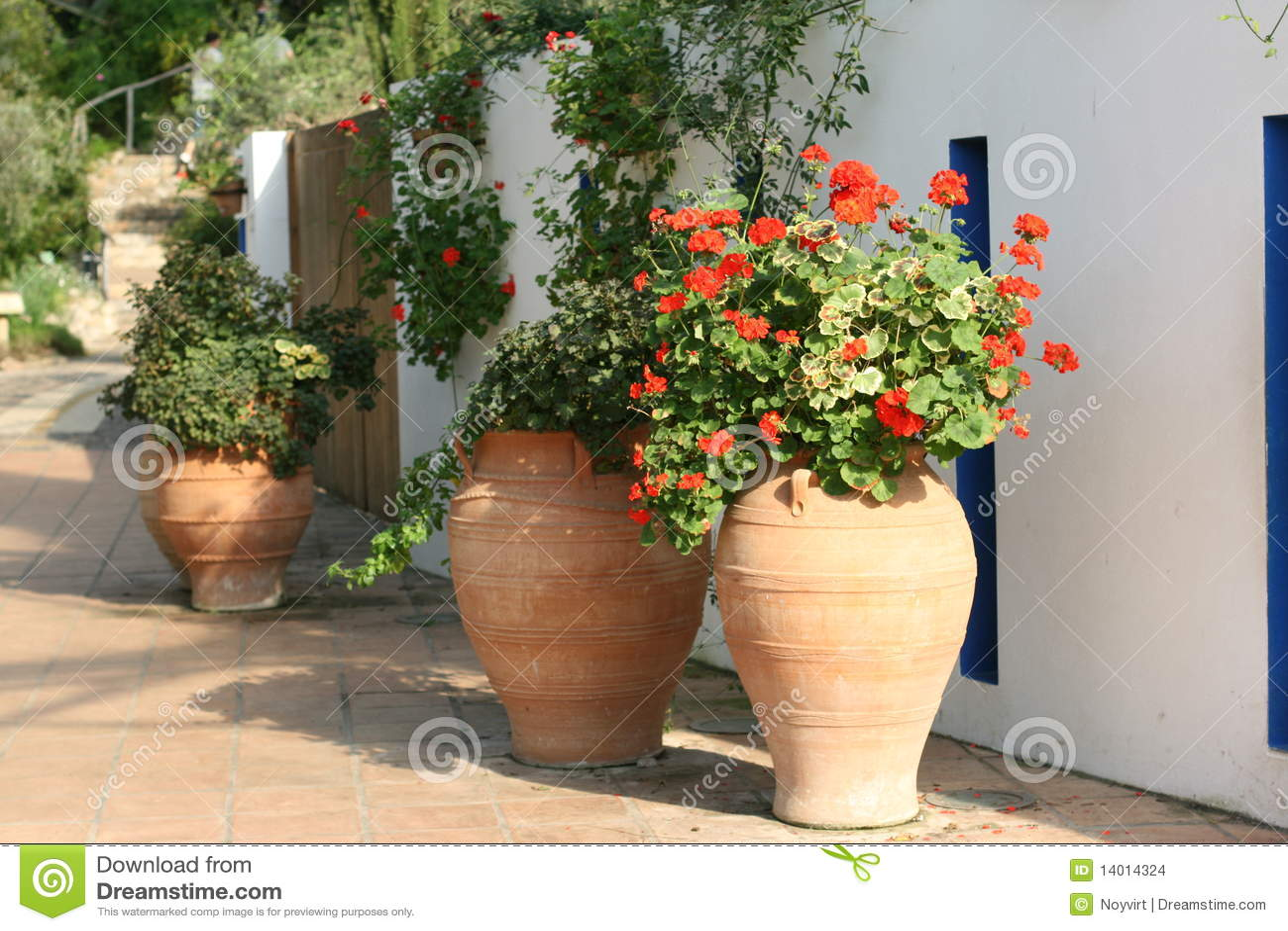 Giardino mediterraneo immagini stock immagine 14014324 - Progetto giardino mediterraneo ...