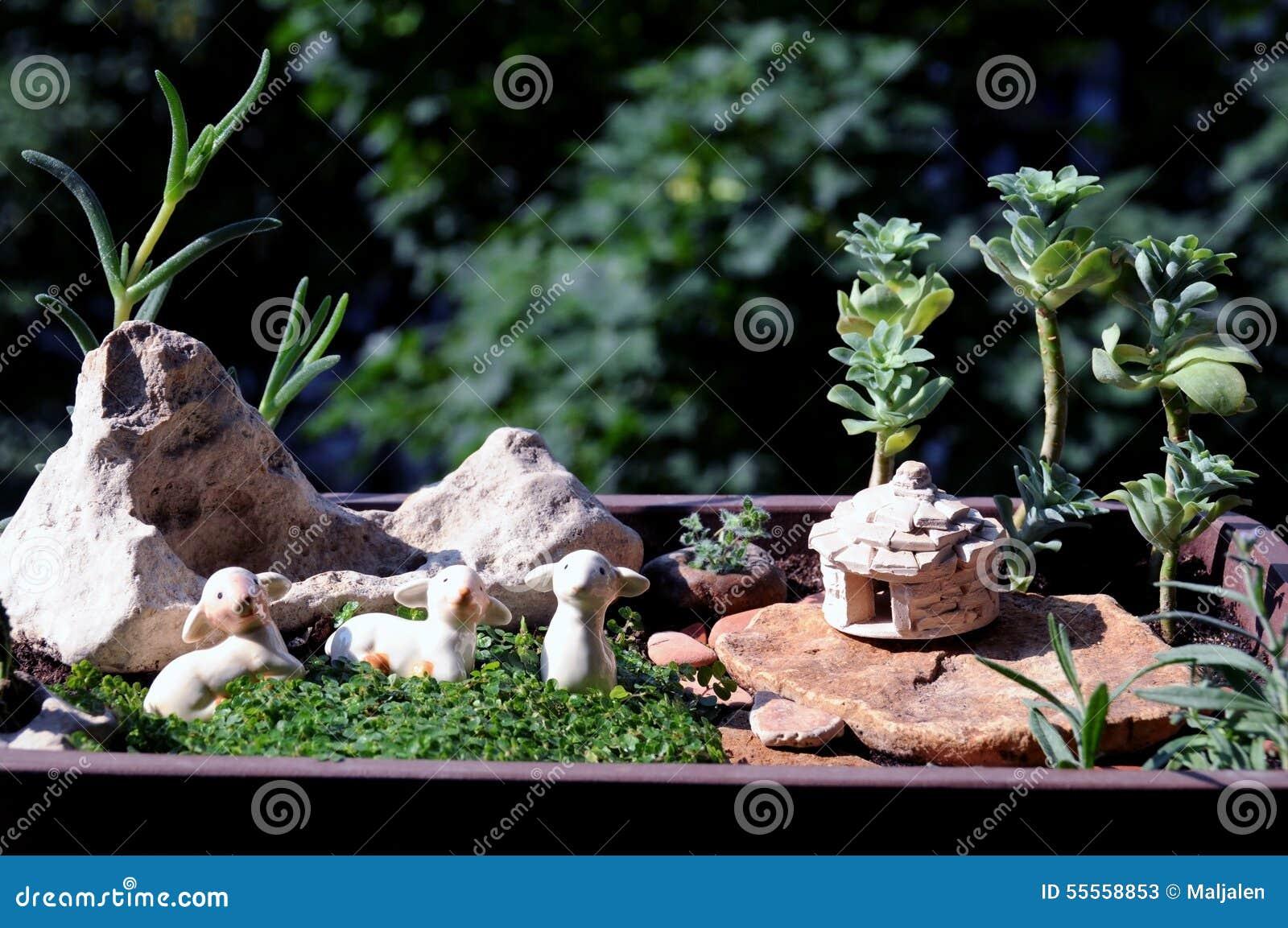 Giardino miniatura del vaso immagine stock immagine di balcone piante 55558853 - Giardino in miniatura ...