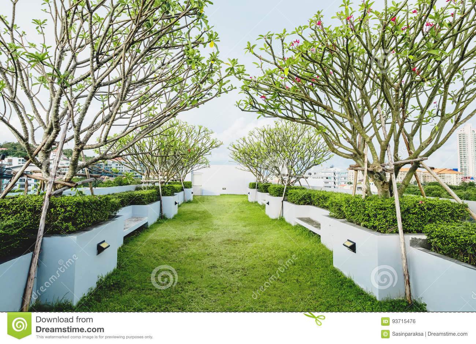 Giardino moderno with giardino moderno arredamento da - Alberi bassi da giardino ...