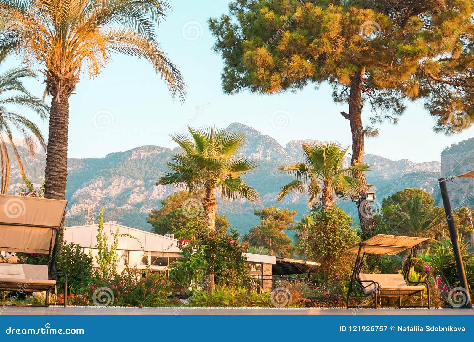 Giardino Nella Località Di Soggiorno Di Montagna Con Oscillazione ...