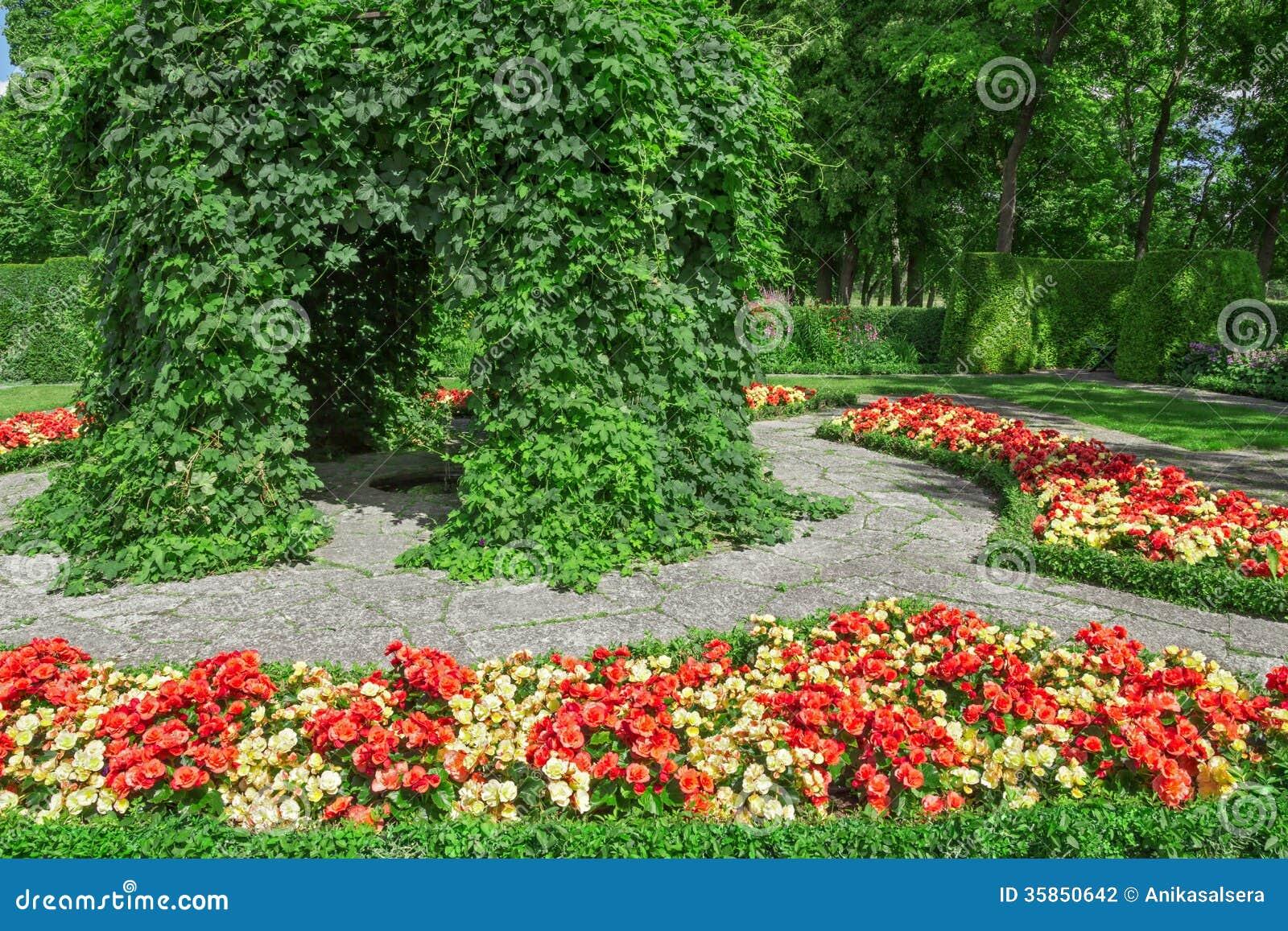 giardino ornamentale con le begonie di fioritura