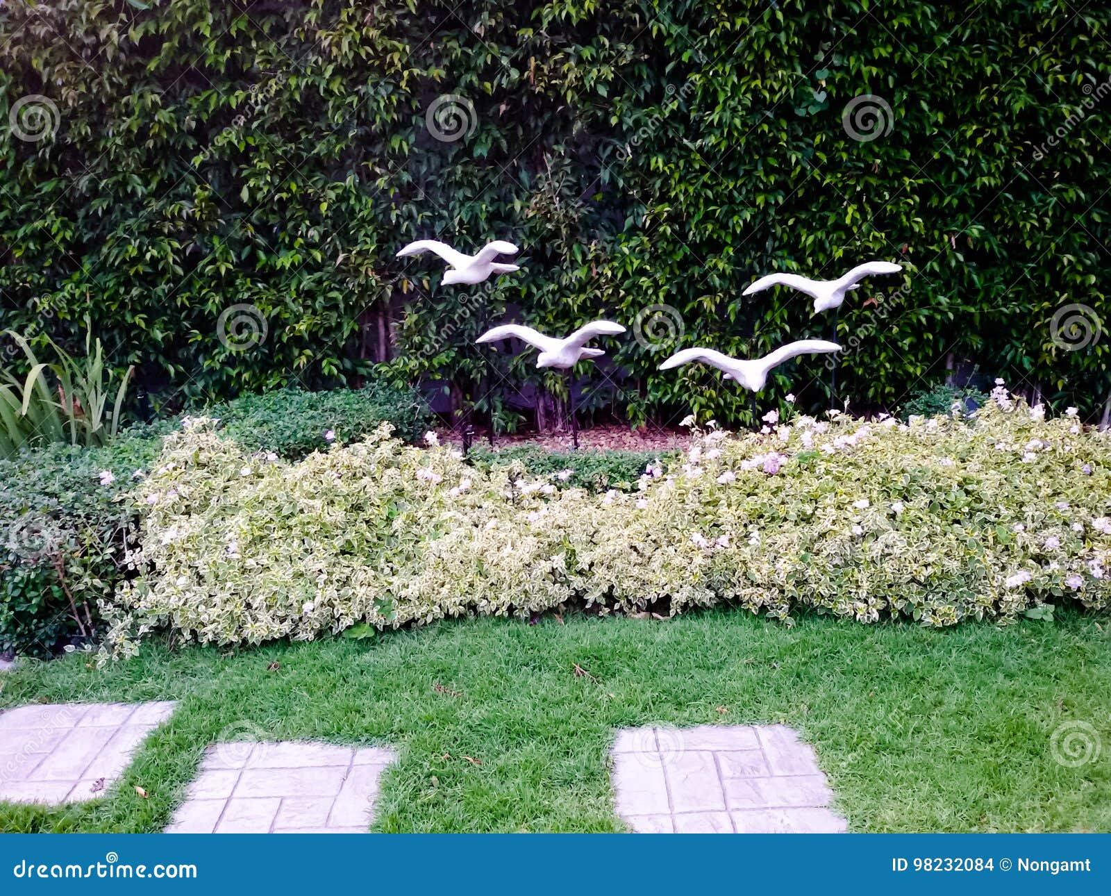 Simple giardino decorato con le pietre e le piante a casa for Giardini decorati con sassi