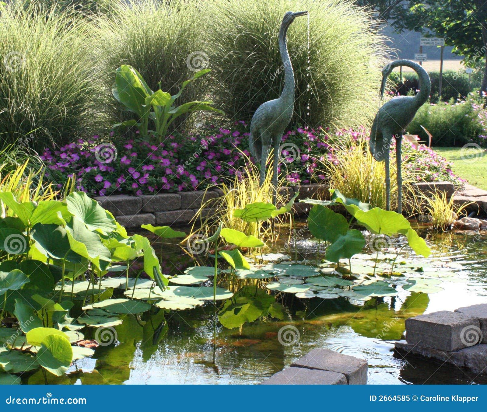 Giardino sereno dello stagno immagine stock immagine di for Stagno da giardino