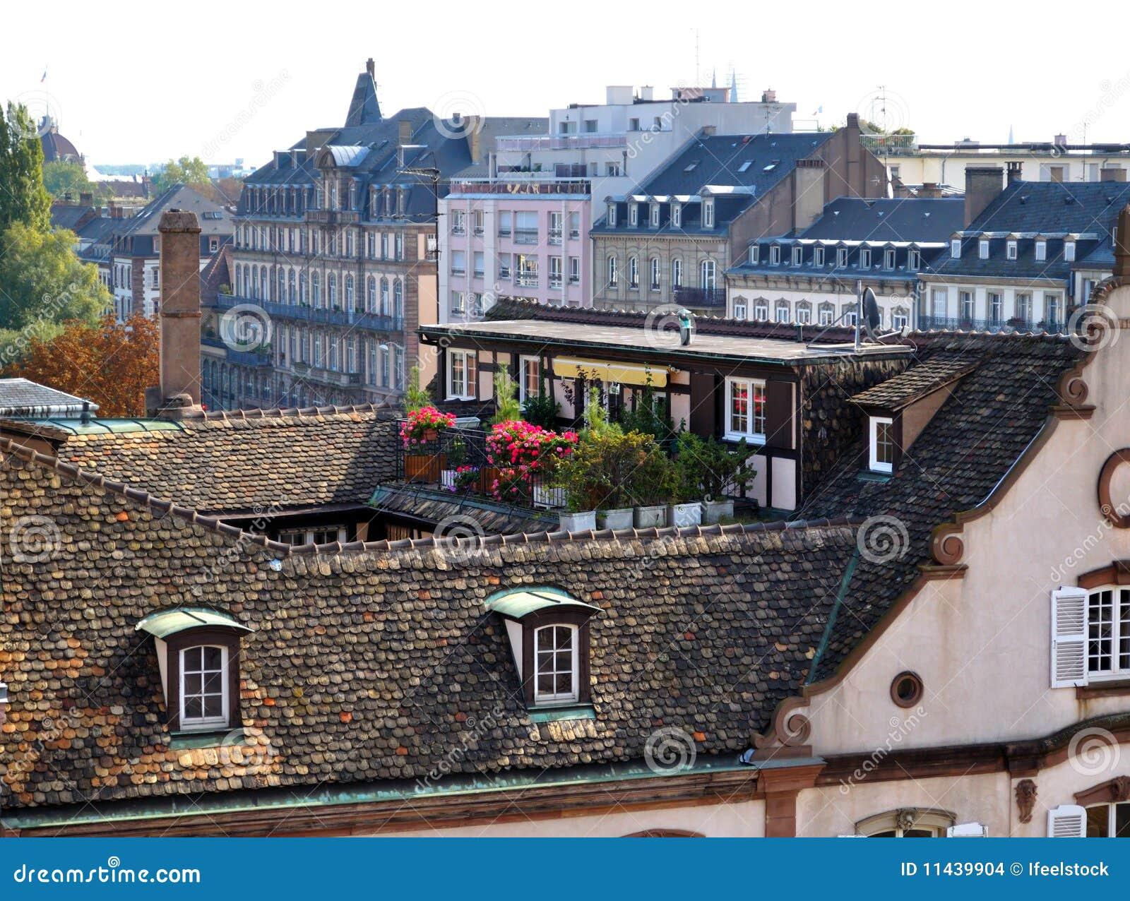 Giardino sul tetto immagini stock immagine 11439904 - Giardino sul tetto ...