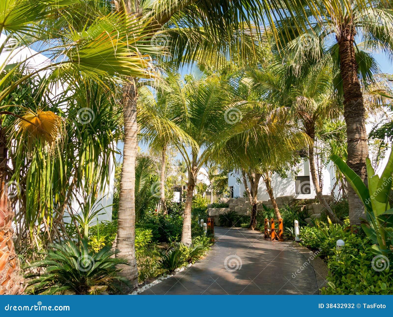 Giardino tropicale dell 39 hotel nel dubai fotografia stock - Giardino tropicale ...