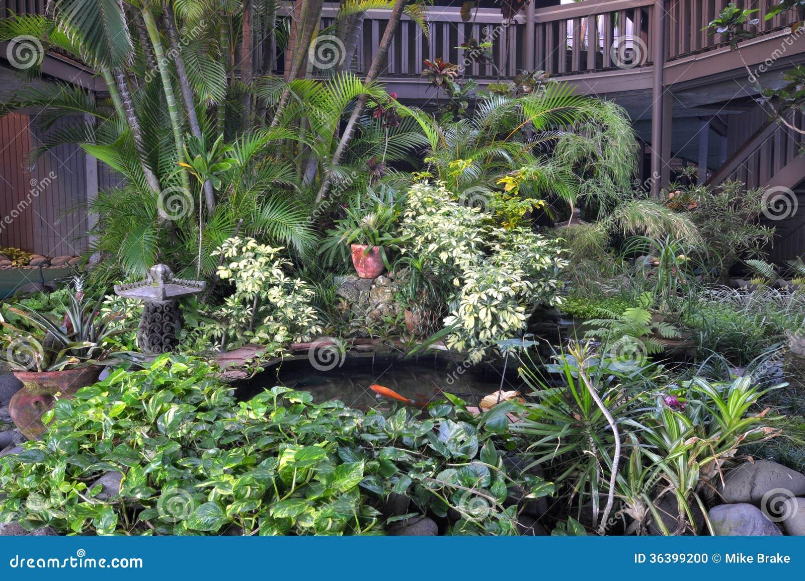 Giardino tropicale dell 39 interno fotografia stock - Giardino tropicale ...