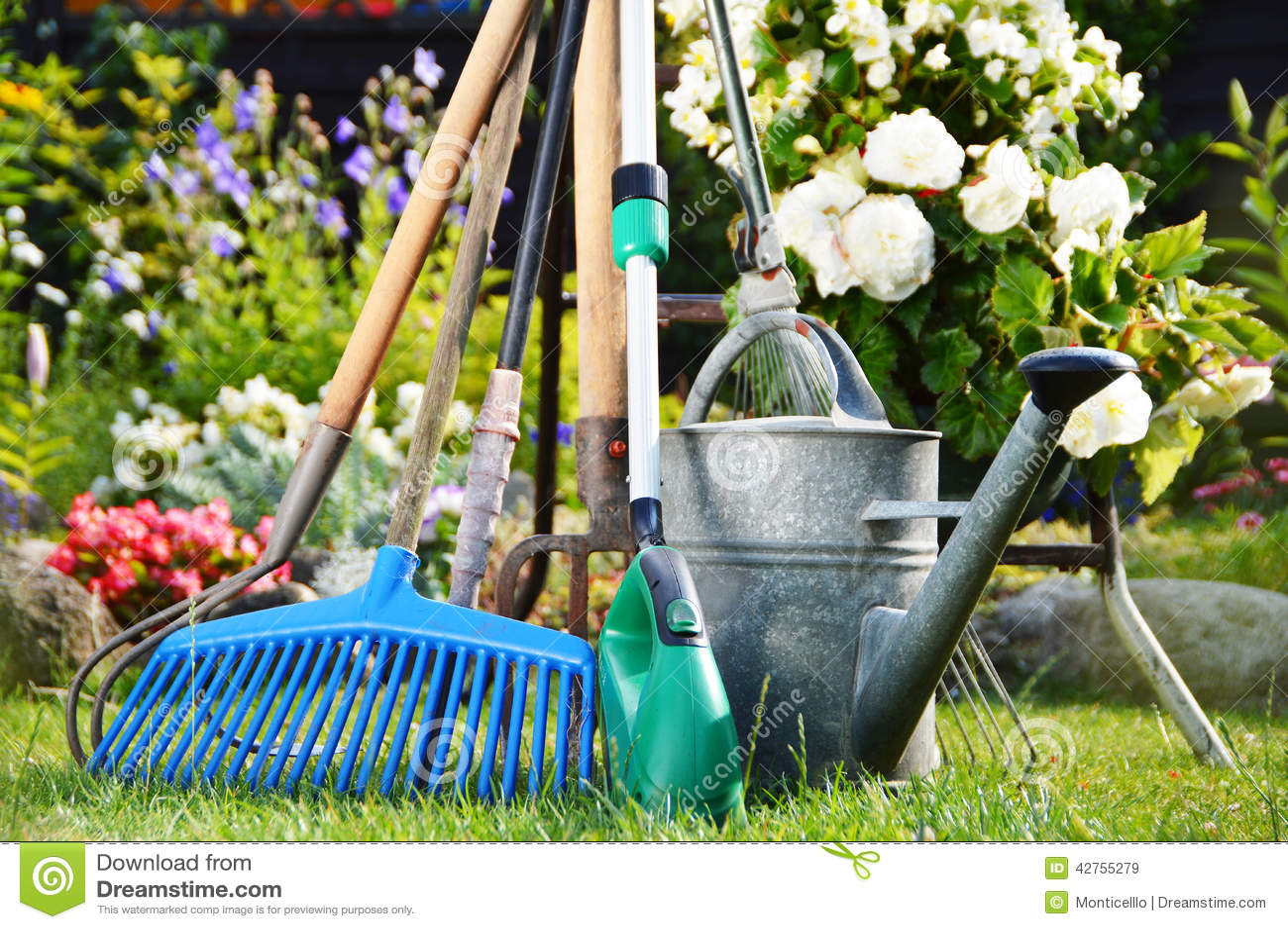 Gießkanne Und Werkzeuge Im Garten Stockbild Bild Von Sommer Dose