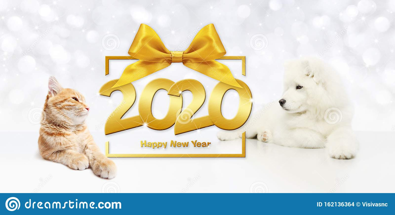Gift Card, Dog And Cat 2020 Happy New Year Text On Package