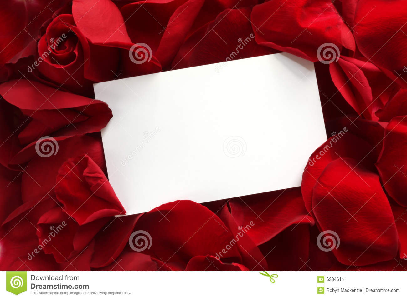 Gift Card on Red Rose Petals
