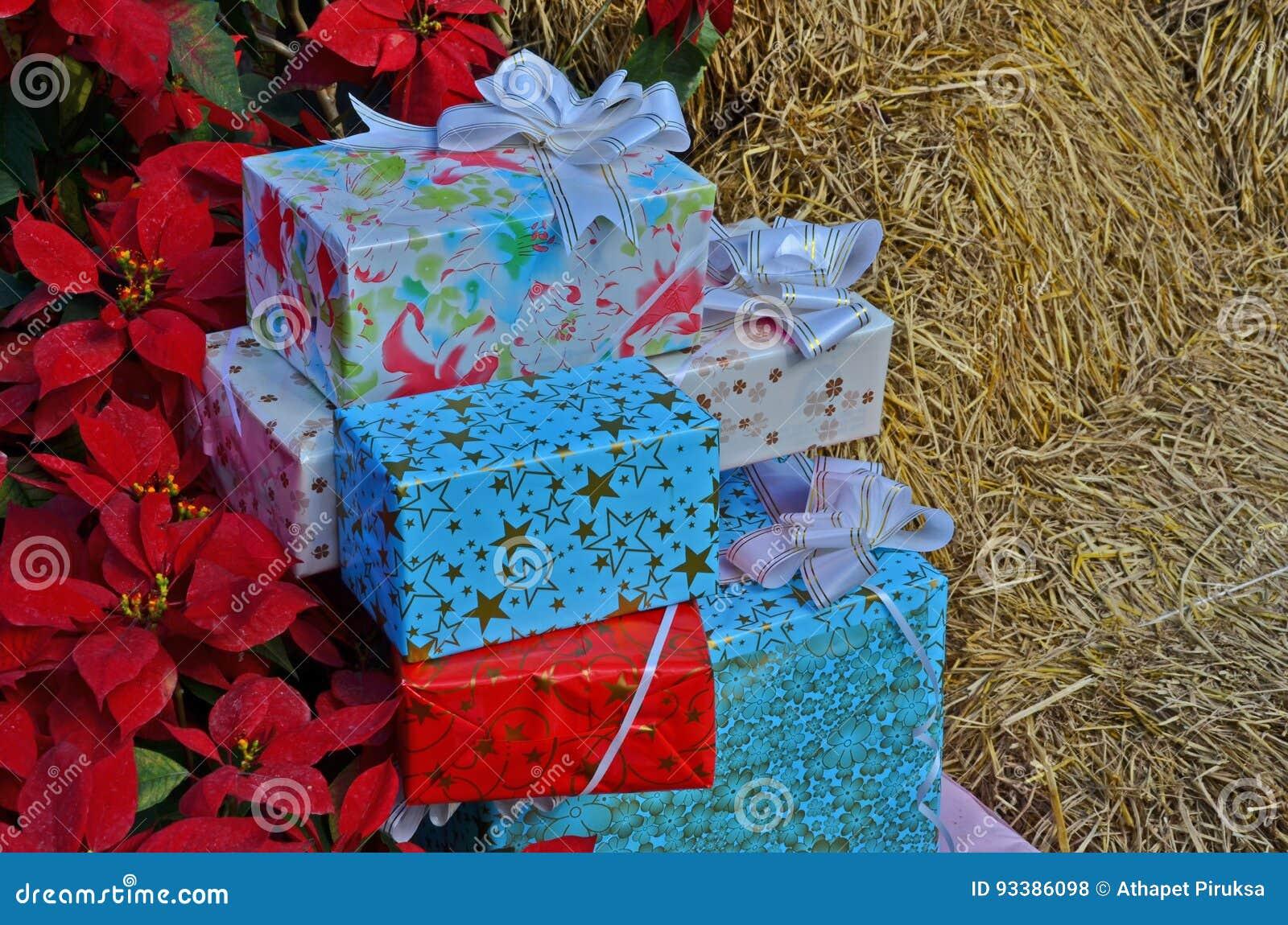 Giftdozen voor Kerstmisfestival