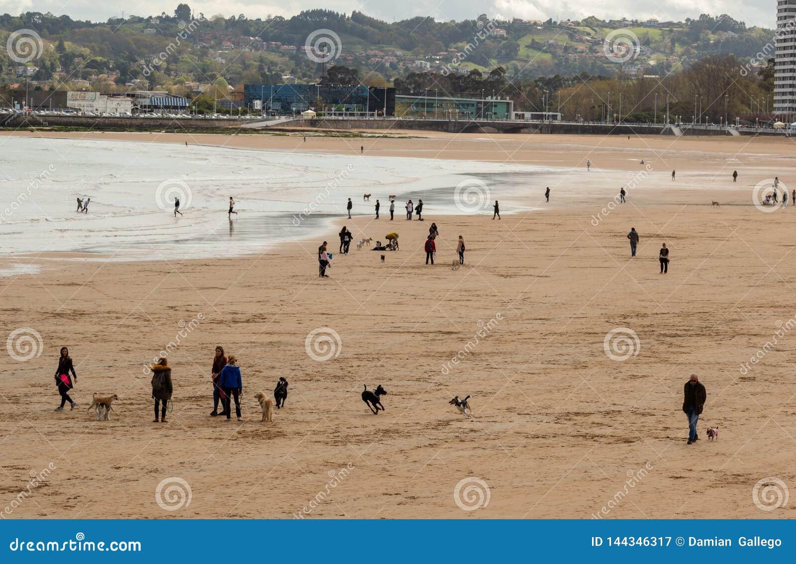 Gijón, Asturias, España, el 9 de abril de 2019 gente disfruta del día en la playa, con sus animales domésticos