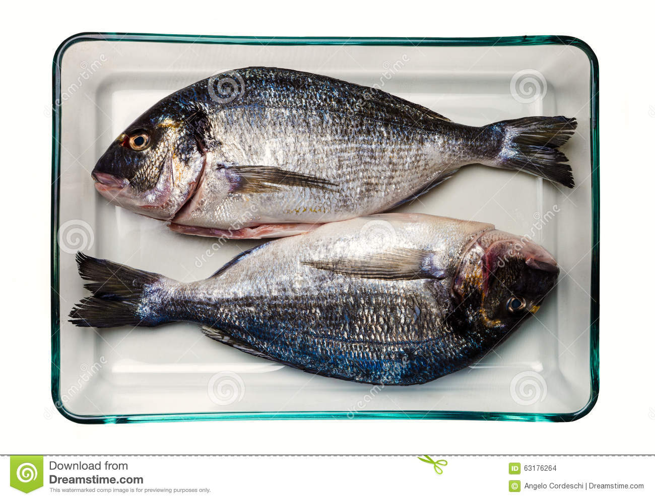 Gilt head bream fish healthy food stock photography for Cooking white fish