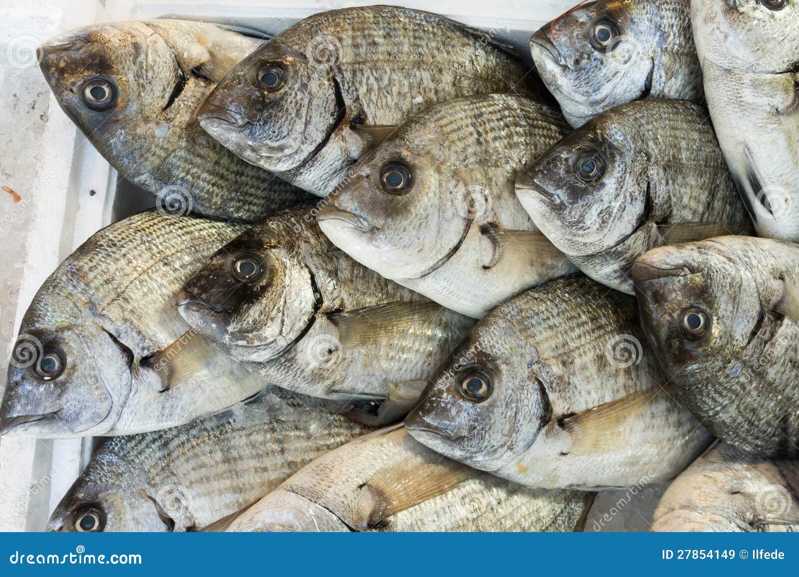 Giltheads leszcza ryba przy rynkiem