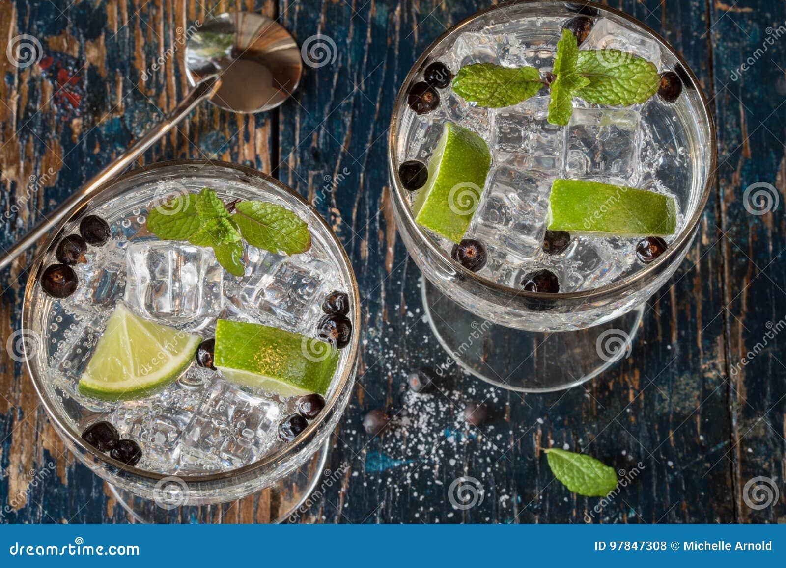 Gin und Stärkungsmittel stockfoto. Bild von ansicht, getränk - 97847308