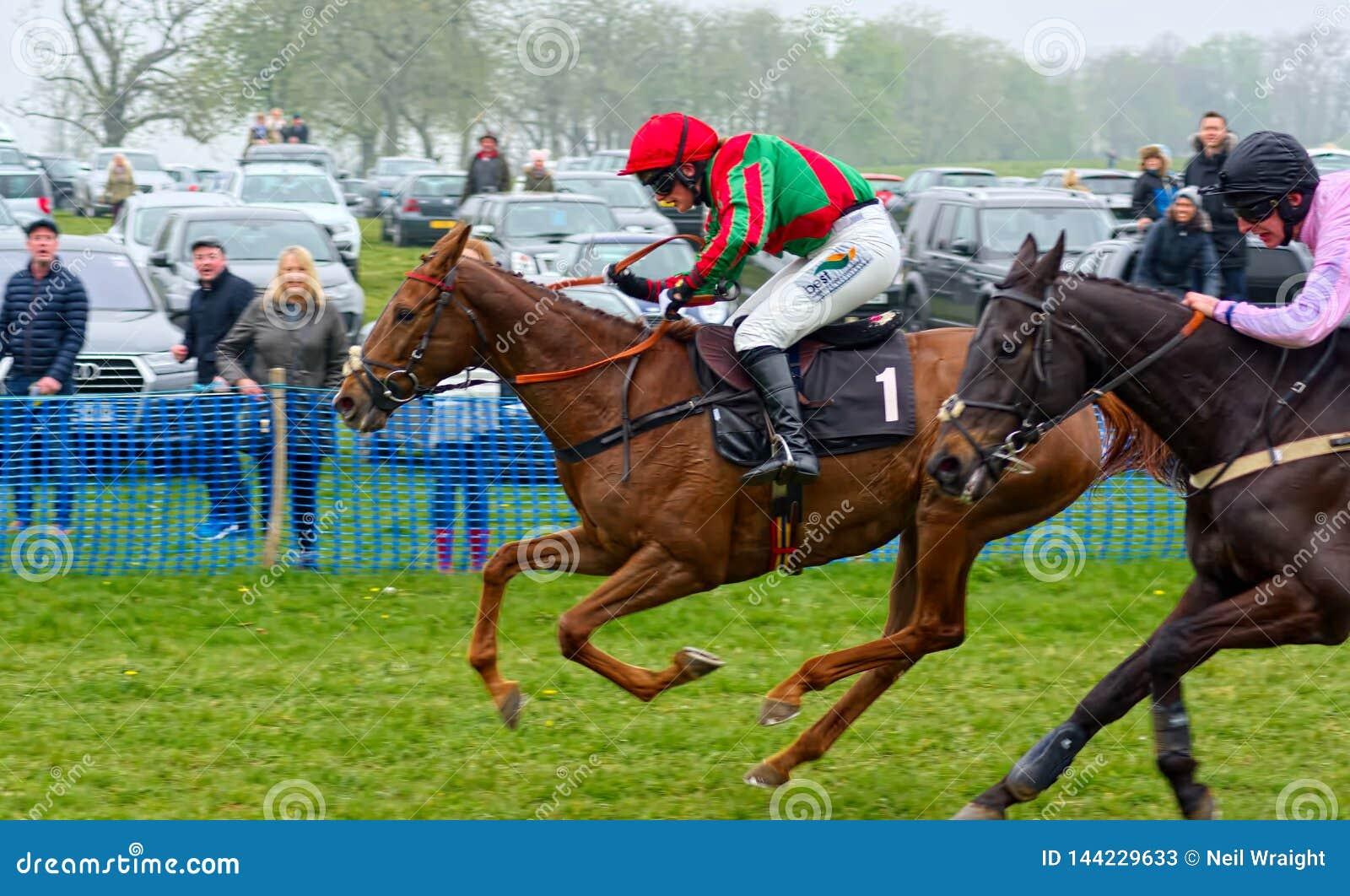 Gina Andrews Carrera de caballos de punto a punto
