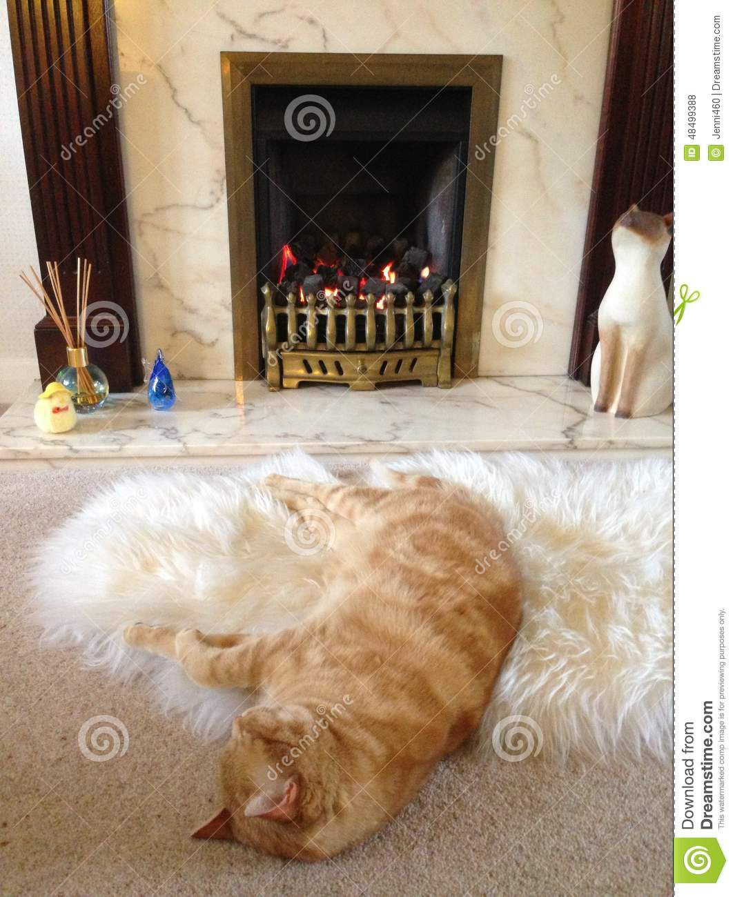 Ginger Cat In Front Of A Fire Stock Photo