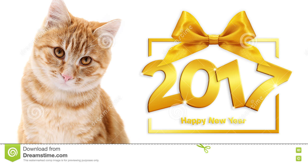 ginger cat and happy new year 2017 text with ribbon bow