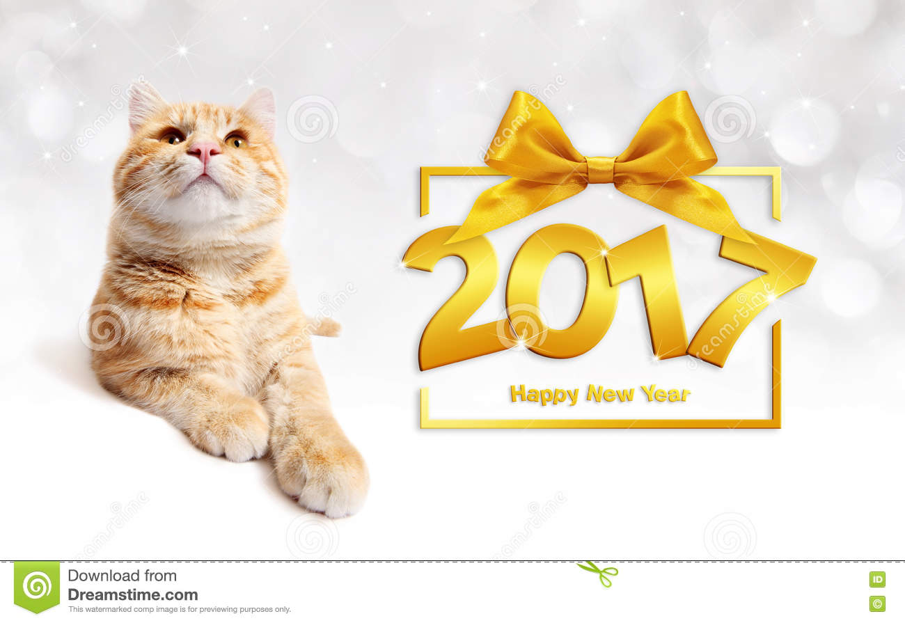 ginger cat and golden happy new year 2017 text with ribbon bow