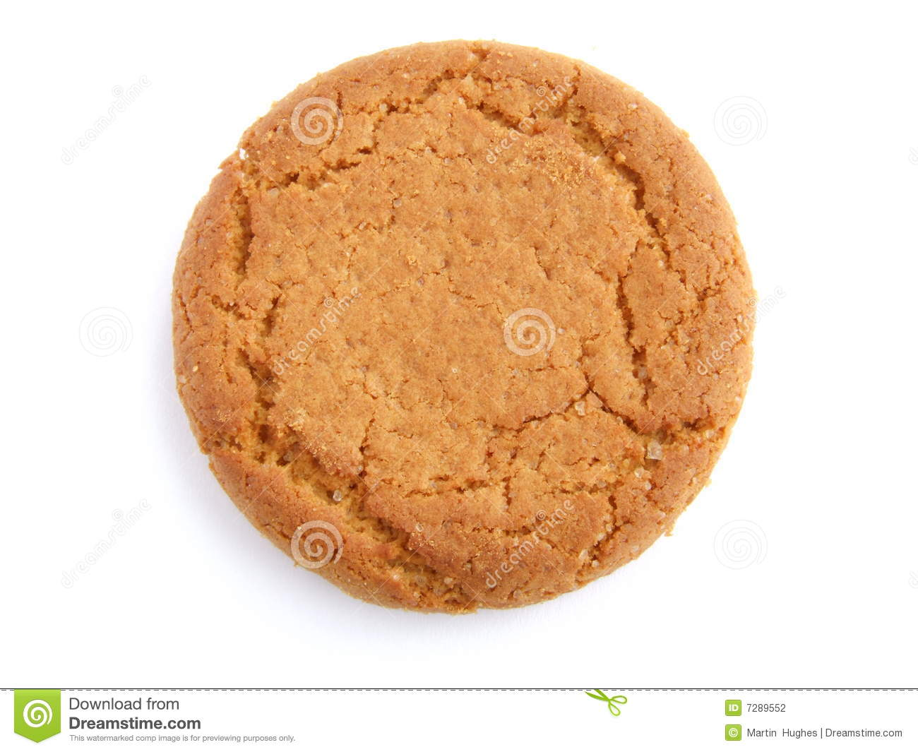 Ginger Nut Biscuit Stock Photography - Image: 7289552