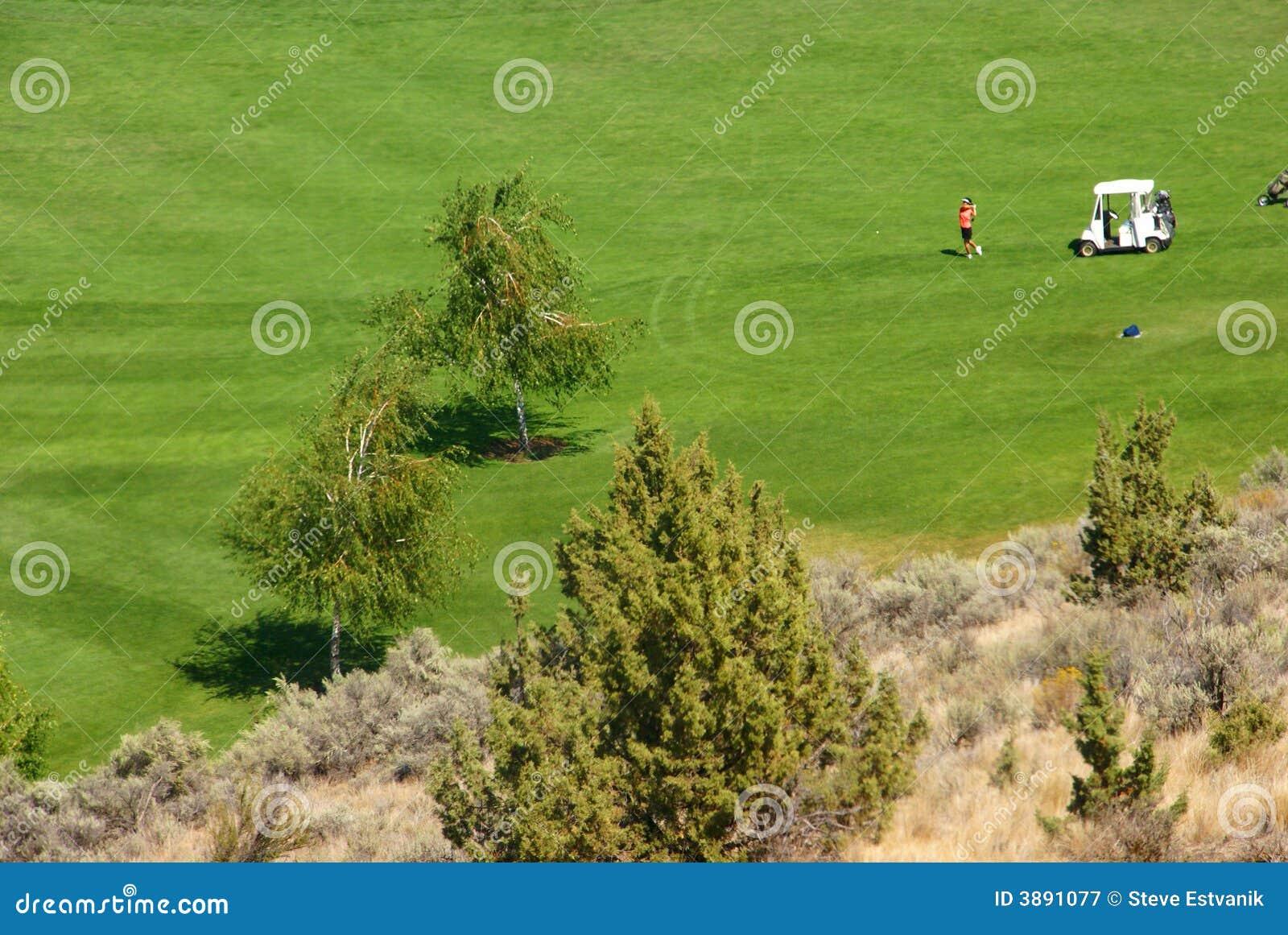 Giocatori di golf sul tratto navigabile verde intenso