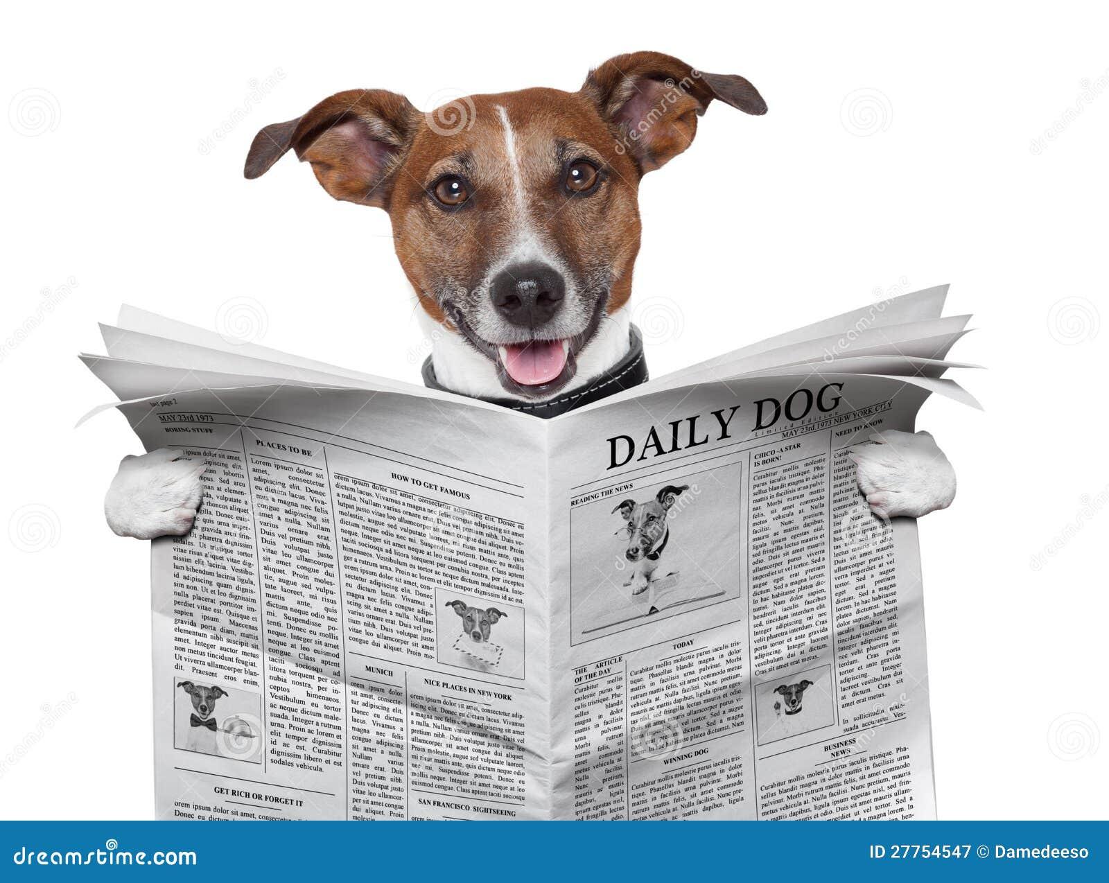 Giornale del cane