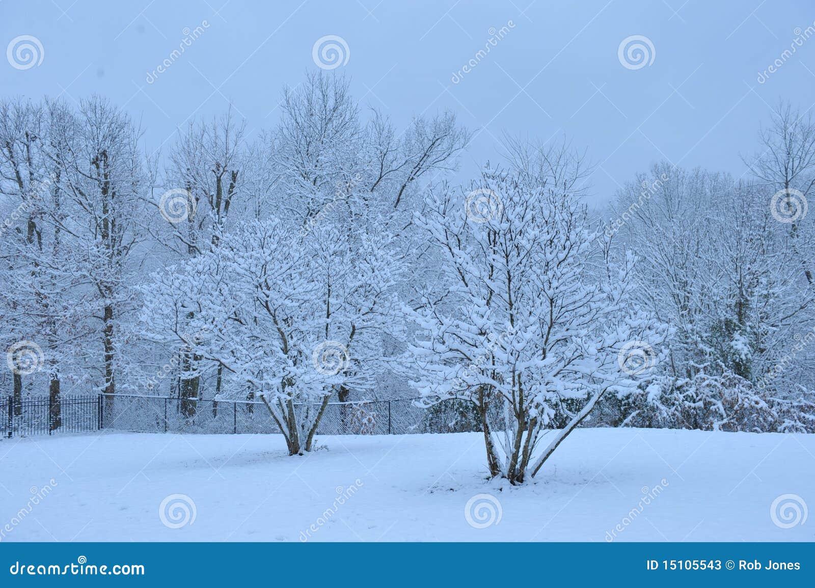 Giorno di inverno calmo