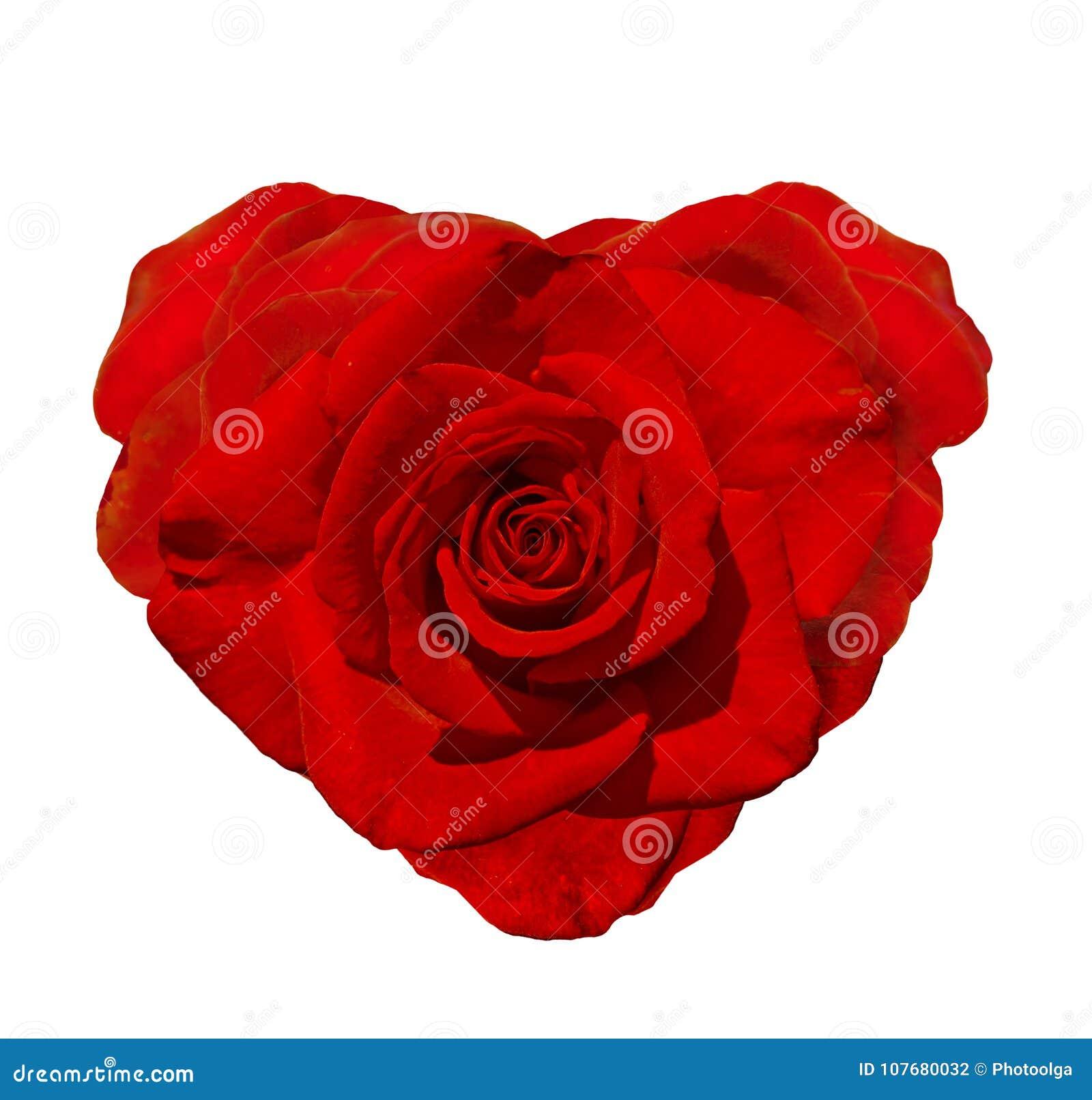 Giorno Felice Dei Biglietti Di S Rose In The Shape Of Rossa Un
