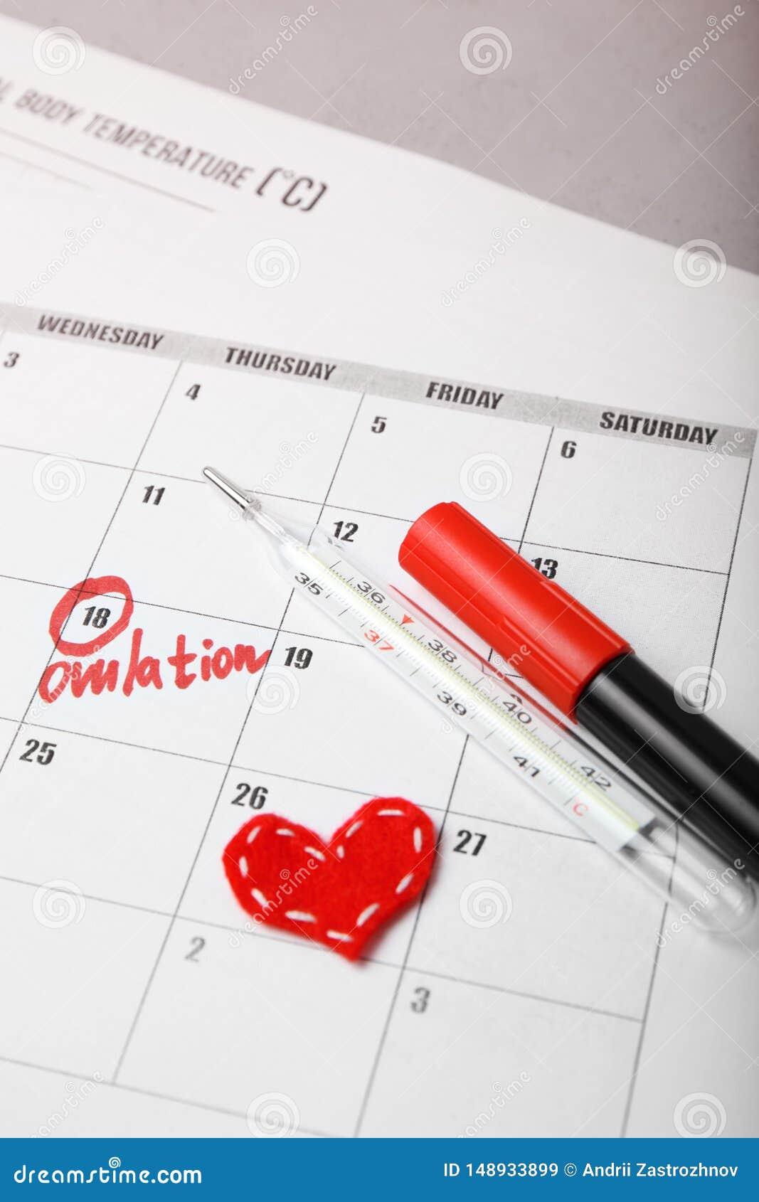 Giorno promettente e fertile per il bambino di concepimento Pianificazione familiare Ciclo di ovulazione