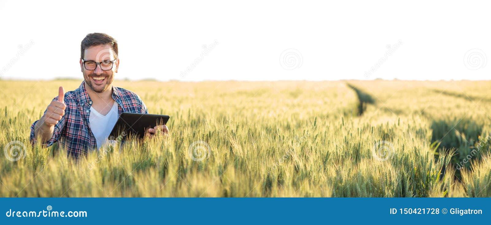 Giovane agricoltore o agronomo felice sorridente che utilizza una compressa in un giacimento di grano Mostrando il pollice in su