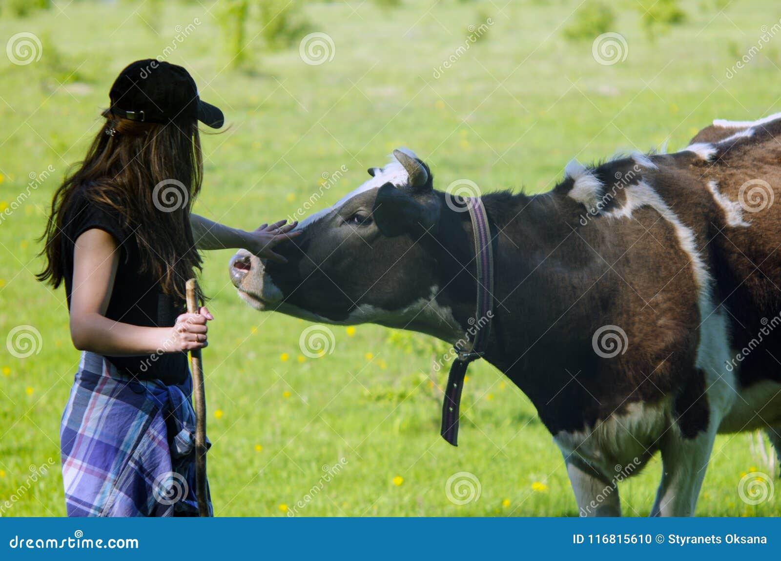 Giovane donna che segna una mucca