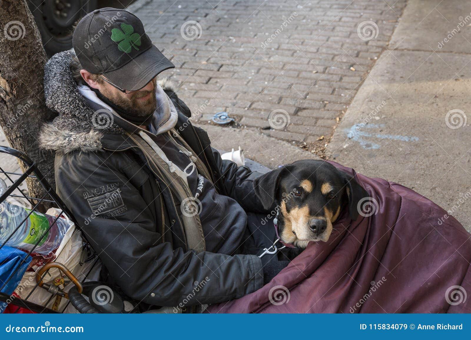 Giovane uomo senza tetto e suo il cane che si trovano sul marciapiede in sacco a pelo