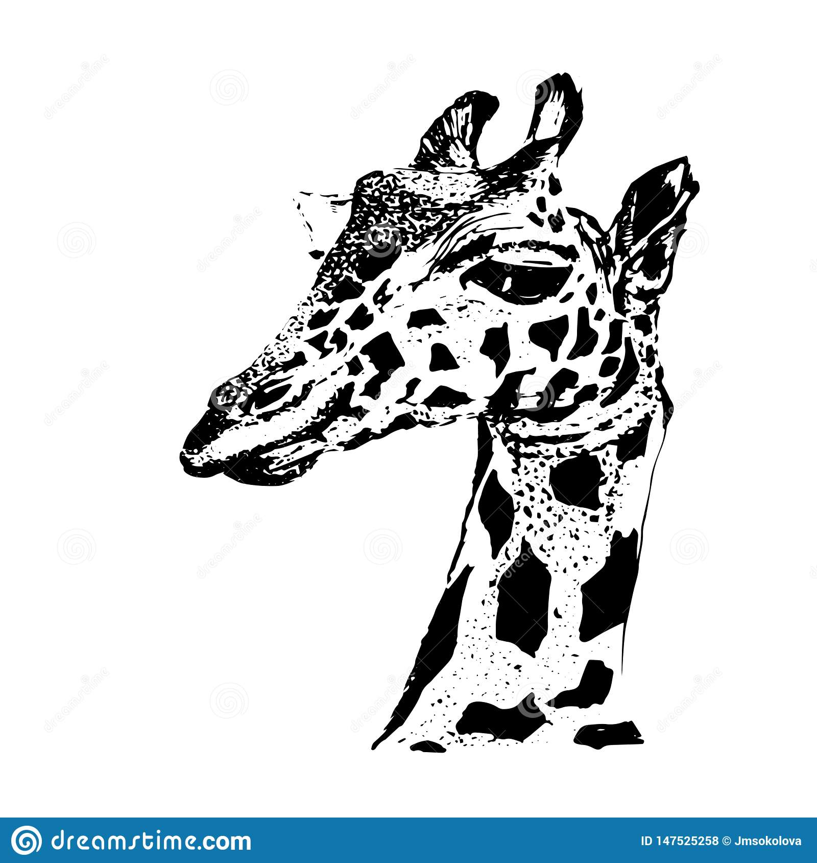 Giraffe σχέδιο πορτρέτου