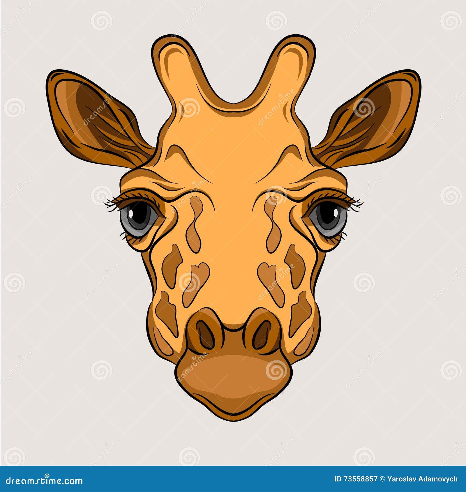 giraffe head clipart - Jaxstorm.realverse.us