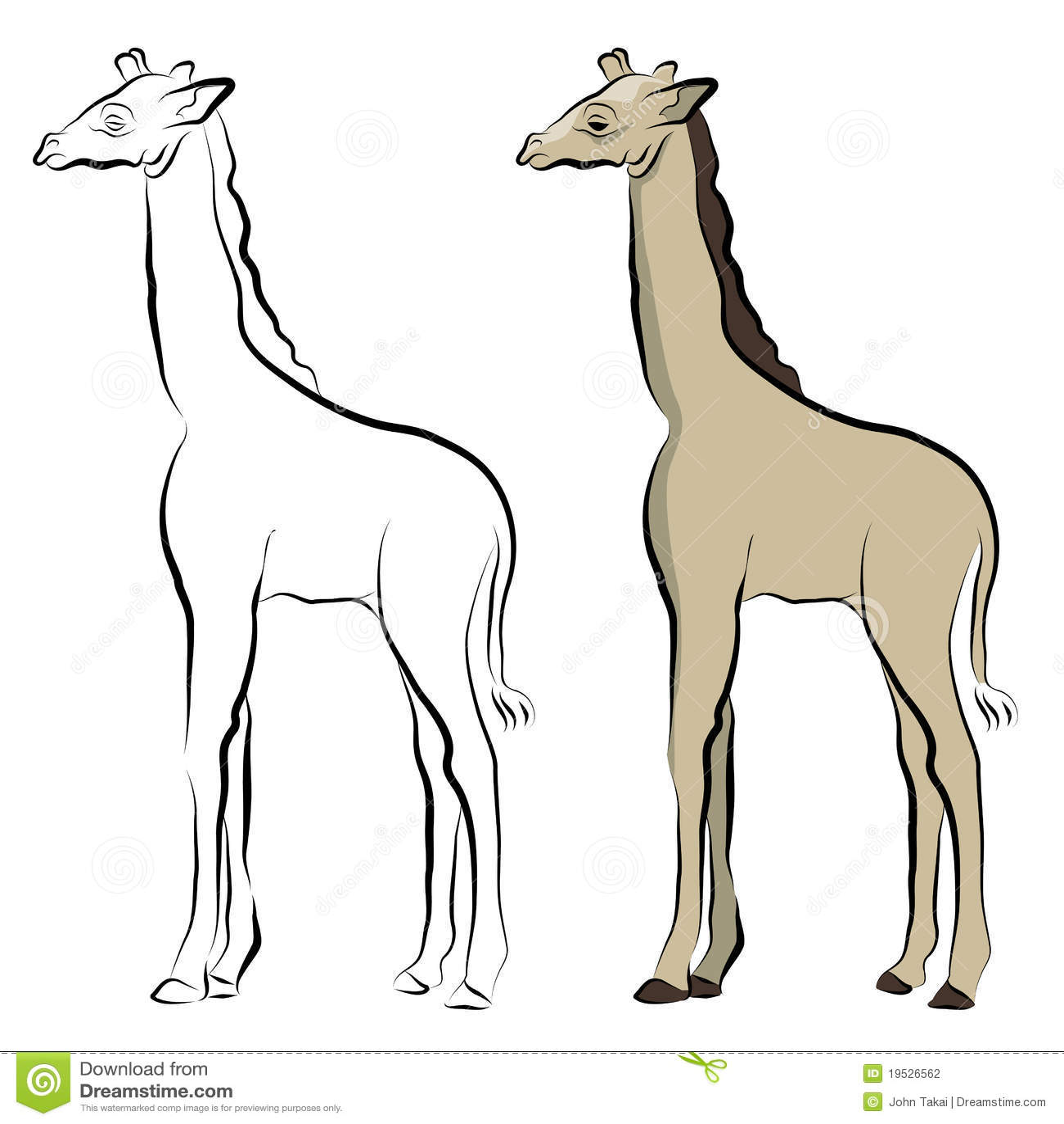 Line Drawing Giraffe : Giraffe line drawing stock photography image