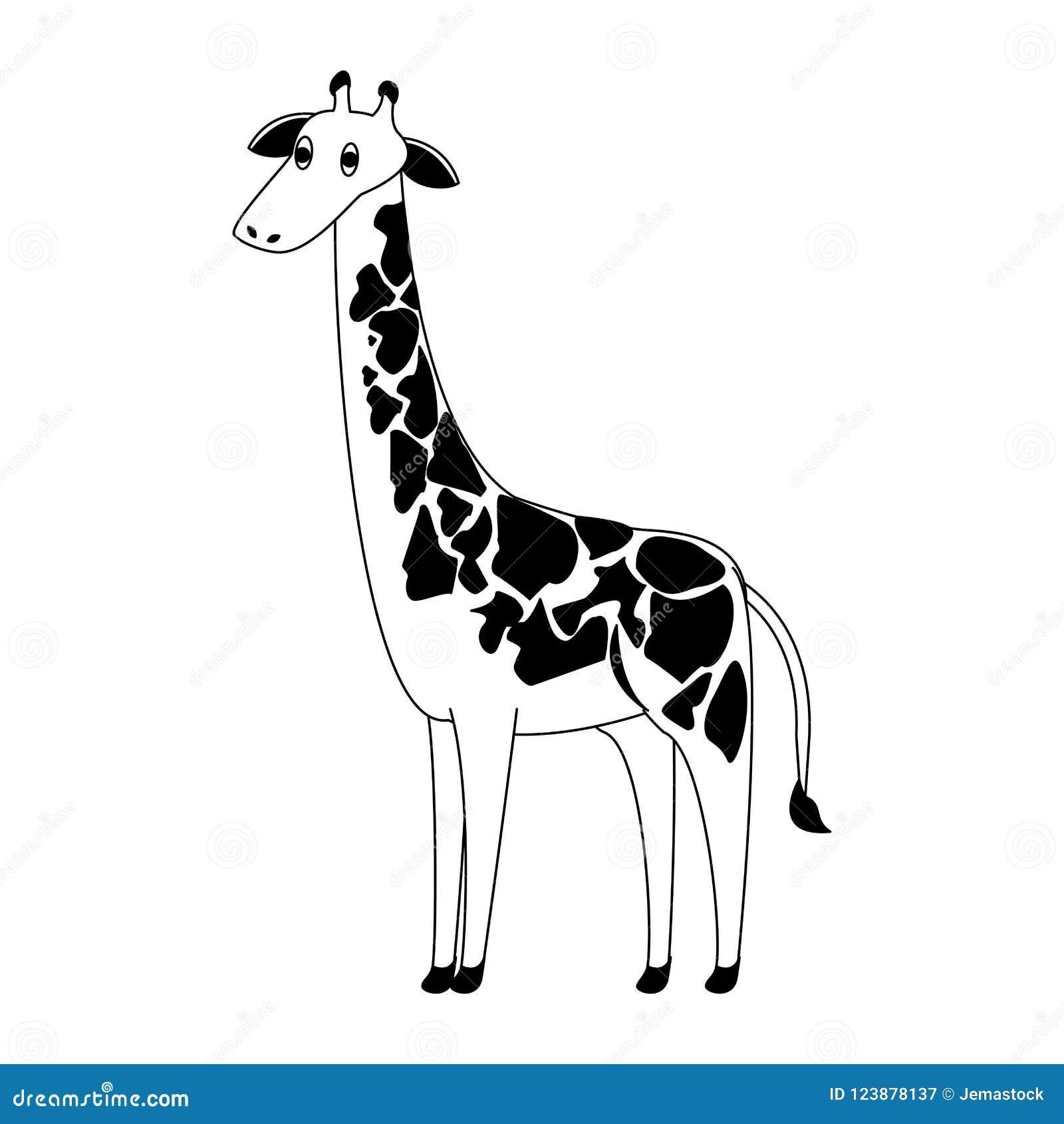 Giraffe Wild Animal In Black And White Stock Vector Illustration