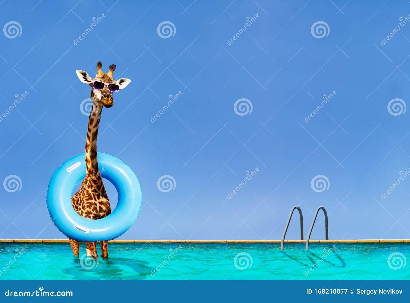Ständer im schwimmbad