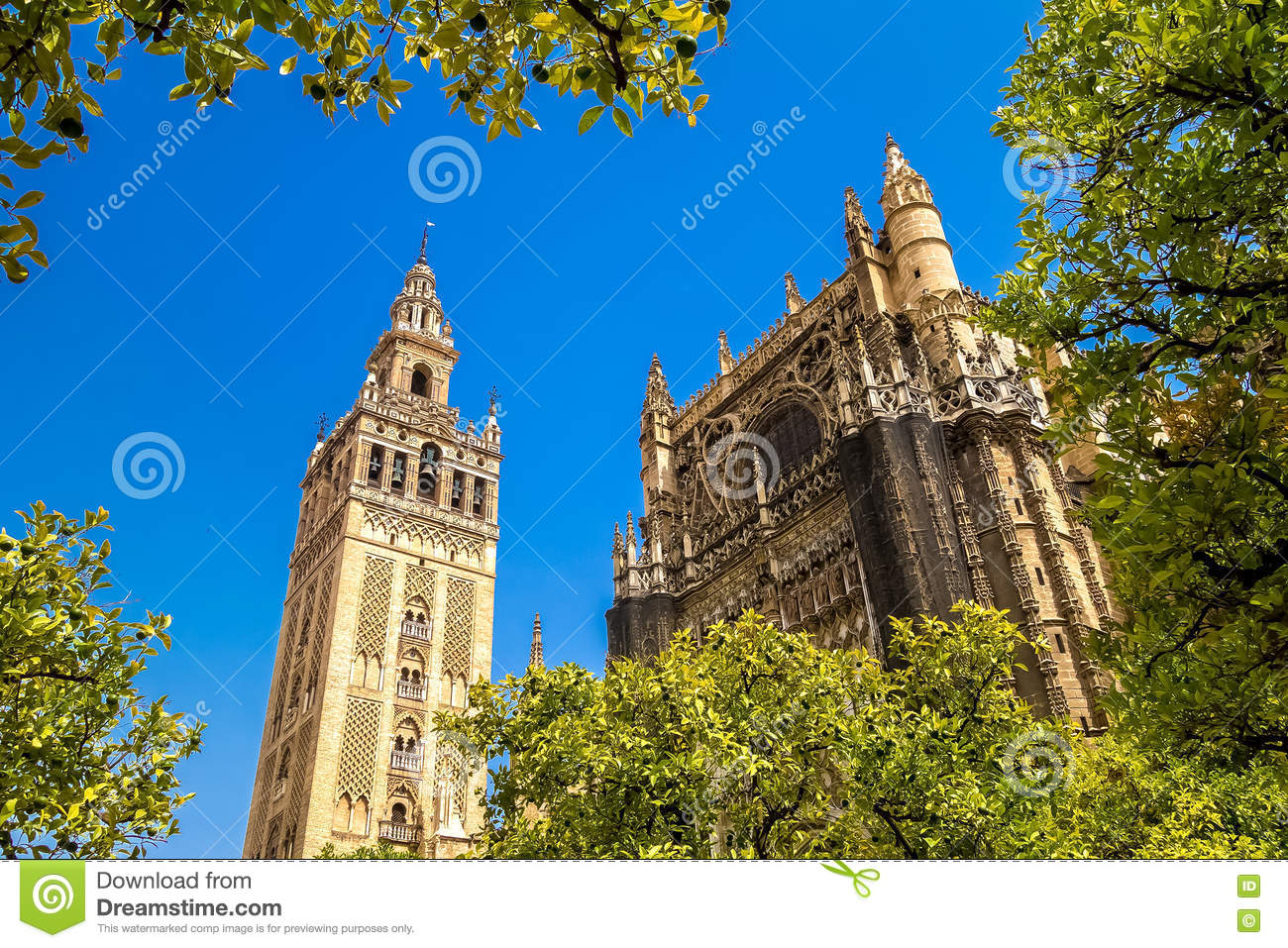 Giralda and roof of the Sevilla Cathedral