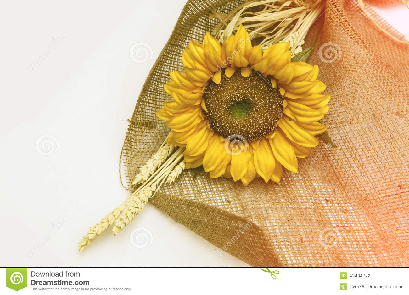 Girasol de la flor